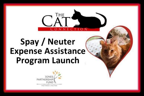 Cat Connection of Waltham Spay/Neuter Expense Assistance Program Launch