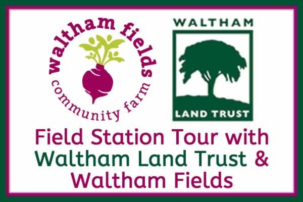 Field Station Tour with Waltham Land Trust / Waltham Fields
