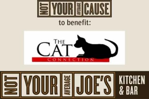 NYAJ Fundraiser for The Cat Connection Waltham, MA