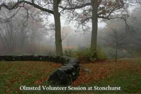 Olmsted Volunteer Session at Stonehurst
