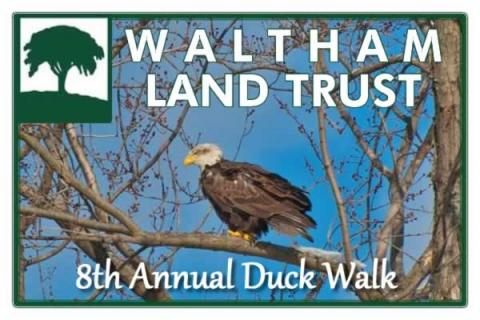 8th Annual Duck Walk along the Charles with Waltham Land Trust